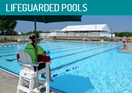 Swimsafe Pool Management Inc Cincinnati Ohio Dayton